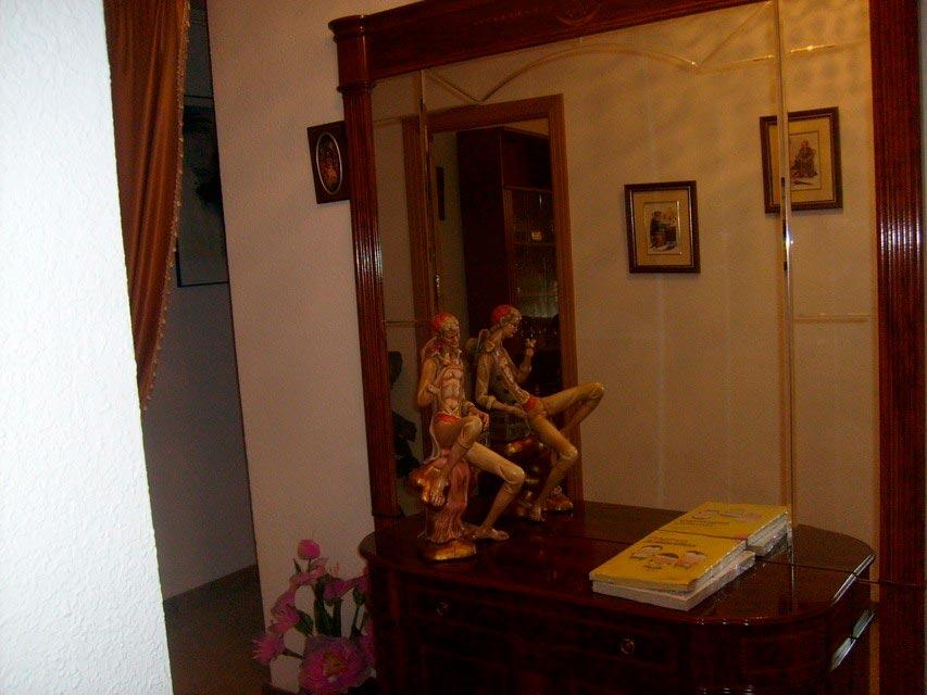 acogedor-piso-en-venta-con-gran-cocina-en-santa-rosa-salon