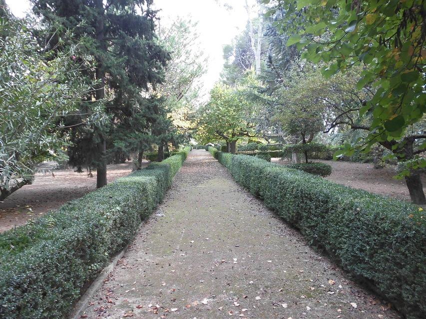 Casa-de-recreo-en-Muro-de-Alcoy-jardin