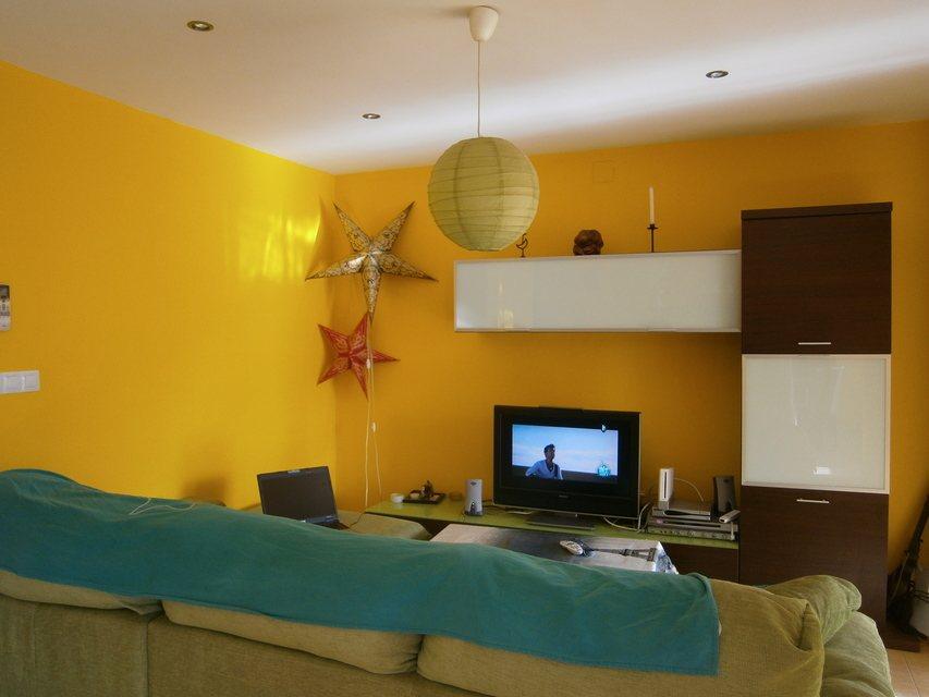 Espaciosa vivienda en la zona de Ensanche-salon 2
