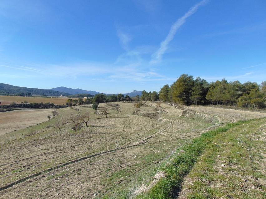 Masía-Rústica-en-venta-Mariola-terreno-agrícola