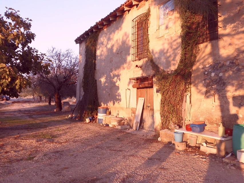 Masía-agrícola-en-la-Alcudia-exterior-1