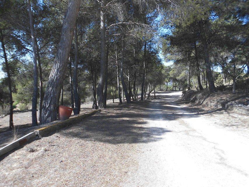 Masía-con-terreno-en-Onil-camino