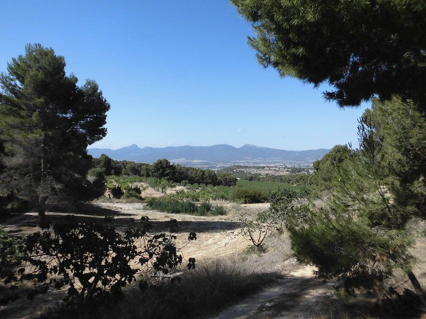 Masía-con-terreno-en-Onil-terreno