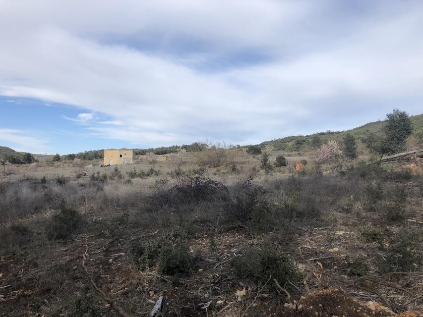 Masia-en-venta-Bocairente-Terreno-1