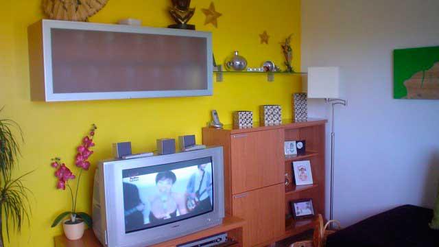SE VENDE BONITO PISO EN EL CENTRO DE ALCOY-salon2