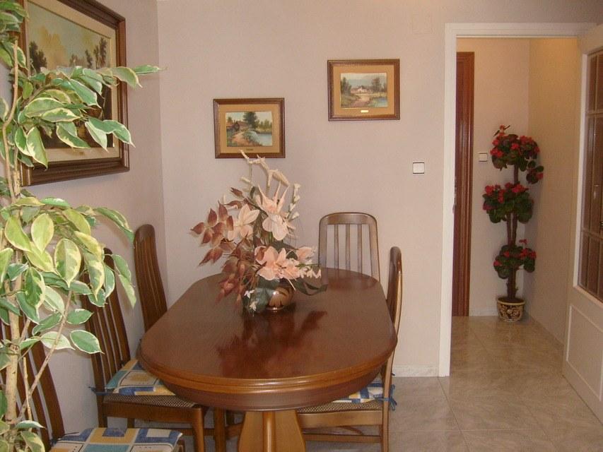 Se-vende-bonito-piso-Zona-Norte-salon-comedor