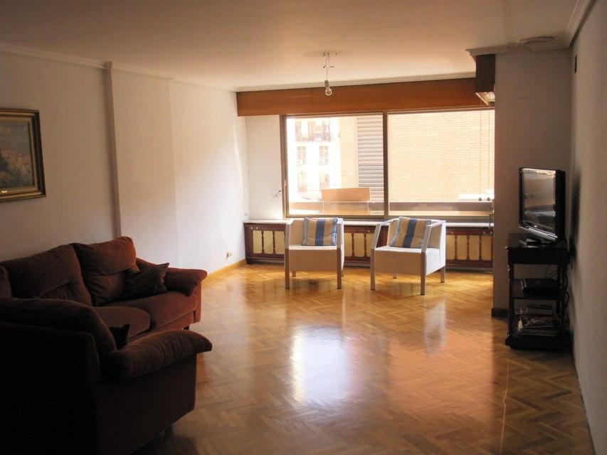 Se vende piso con 5 habitaciones en zona centro-salon 2