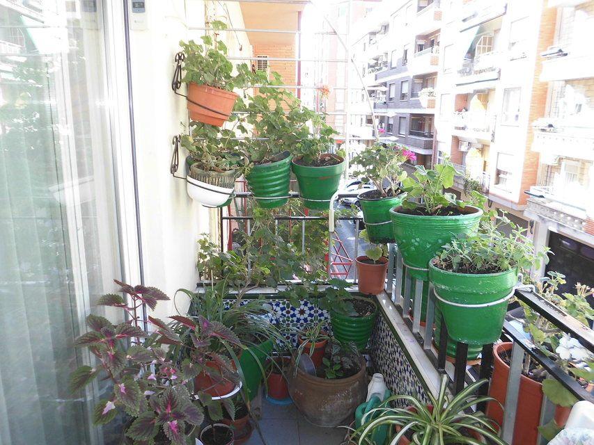 Pequeño y confortable piso en la zona Santa Rosa - vistas