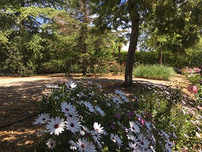 Gran chalet con jardín de ensueño en Gormaig-jardin