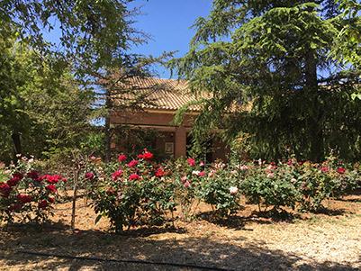 Gran chalet con jardín de ensueño en Gormaig-jardin2
