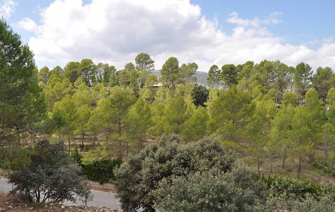 Hermosa casa de campo con vistas alucinantes Ibi-vistas