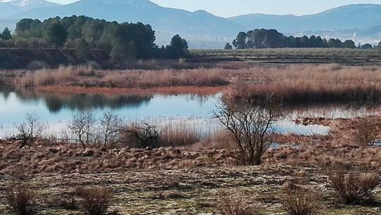 Hermosas Vistas en casa de Campo en Gaianes-bancal2