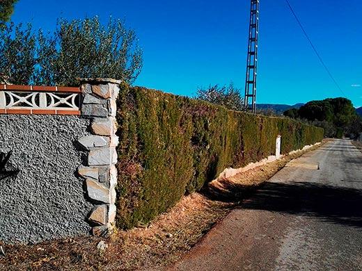 Hermosas Vistas en casa de Campo en Gaianes-entrada2