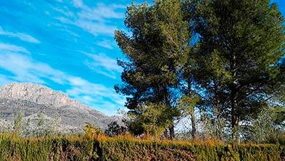 Hermosas Vistas en casa de Campo en Gaianes-vistas