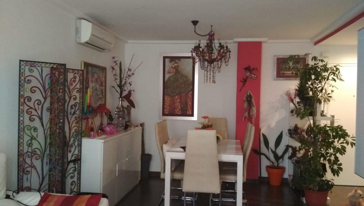 Soleado y confortable piso con balconcito en Santa rosa-comedor3