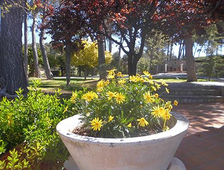Gran chalet con vistas a la Fuente roja y huerta-jardin