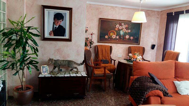 Luminoso piso en venta con cocina office en Santa Rosa-salon