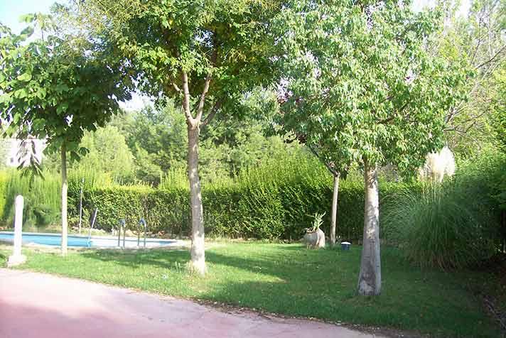 Soleado chalet con estanque y piscina-acceso