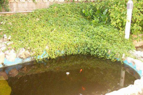 Soleado chalet con estanque y piscina-estanque