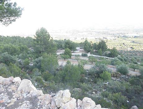 Casa refugio con buena vistas situada en gayanes-vistas4
