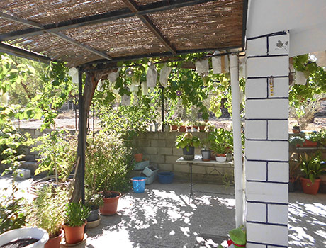Casa de campo a la venta en Banyeres-porche2