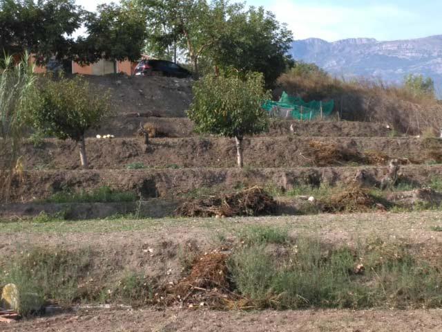 Casa de campo cerca del nucleo urbano en Muro-bancal