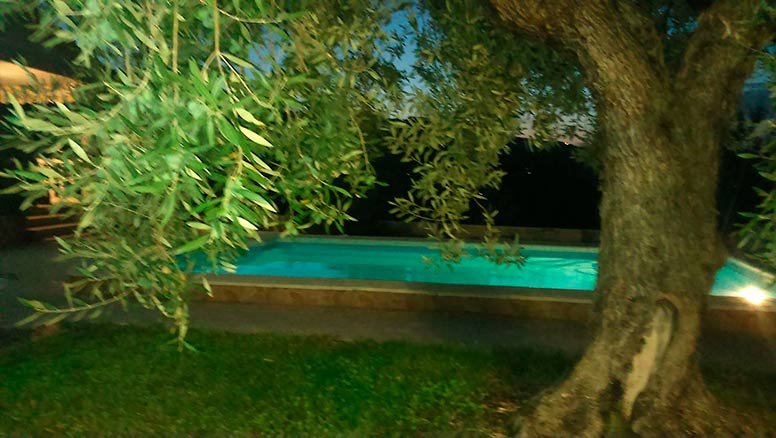 Vivienda en planta en venta con piscina y barbacoa-piscina