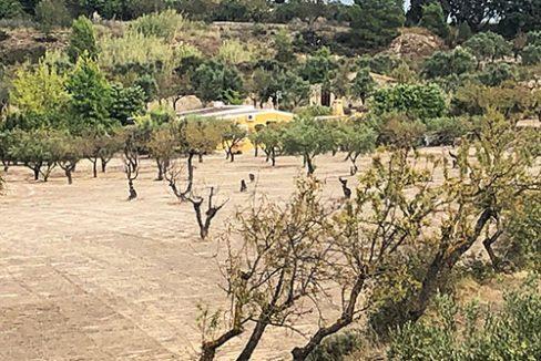 Se vende casa de campo con gran extensión de terreno  - Exterior 4