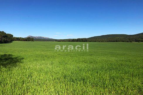 Masía agrícola de grandes dimensiones a la venta en Mariola. - Vistas 6