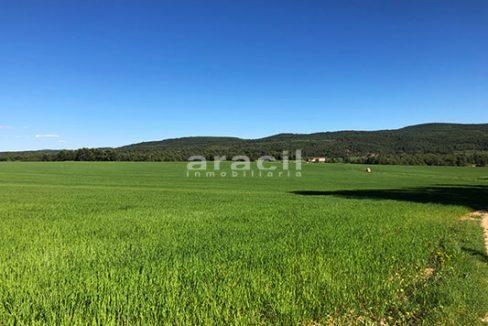 Masía agrícola de grandes dimensiones a la venta en Mariola. - Vistas 7