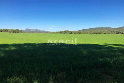 Masía agrícola de grandes dimensiones a la venta en Mariola. - Vistas 5