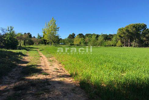 Masía agrícola de grandes dimensiones a la venta en Mariola. - Vistas 3